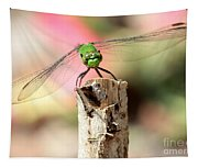Dragonfly In The Petunias Tapestry