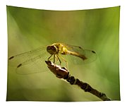 Dragonfly Perched Tapestry