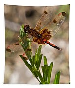 Dragonfly Resting Tapestry