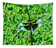 Dragonfly Resting On Stem Tapestry