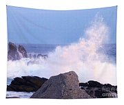 Drama Of The Rocky Shore Tapestry