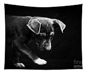Dramatic Black And White Puppy Dog Tapestry