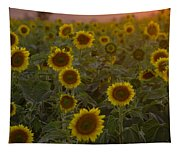 Dreaming In Sunflowers Tapestry