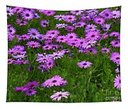 Dreaming Of Purple Daisies  Tapestry