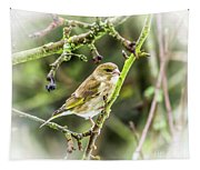 Dreamy Greenfinch. Tapestry