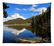 Dreamy Lake In The Rockies Tapestry