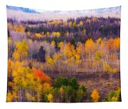 Dreamy Rocky Mountain Autumn View Tapestry