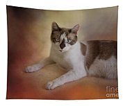 Dreamy Snowshoe Cat Tapestry