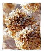 Dried Hydrangea Flowers  Tapestry