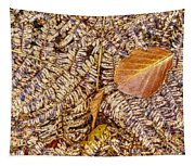 Dried Leaf On The Fern Tapestry