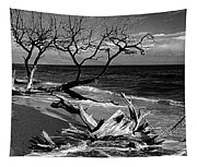 Driftwood Bw Fine Art Photography Print Tapestry