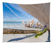 Driftwood C141347 Tapestry