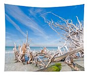 Driftwood C141348 Tapestry