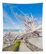 Driftwood C141349 Tapestry