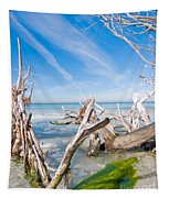 Driftwood C141354 Tapestry