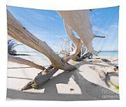 Driftwood C141414 Tapestry