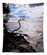 Driftwood Dragon-barnegat Bay Tapestry