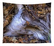 Driftwood In Lahonda Tapestry