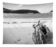 Driftwood On Beach Black And White Tapestry
