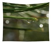 Droplet Tapestry