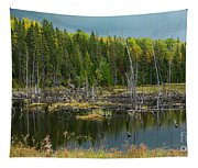 Drowned Trees Tapestry