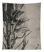 Dry Desert Tapestry