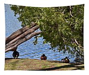 Duck Into The Shade Tapestry