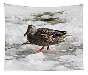 Duck Walking On Thin Ice Tapestry