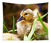 Duckling Tapestry