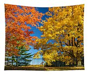 Dueling Maples Tapestry