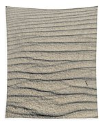 Dune Textures Tapestry