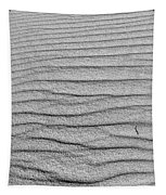 Dune Textures In Monochrome Tapestry