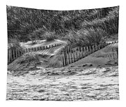 Dunes In Black And White Tapestry