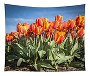 Dutch Tulips Second Shoot Of 2015 Part 3 Tapestry