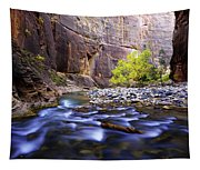 Dynamic Zion Tapestry