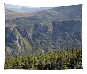 Eagle Cliff - Franconia Notch State Park New Hampshire Tapestry