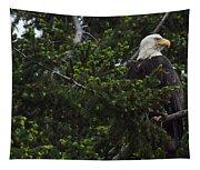 Eagle Eye Tapestry