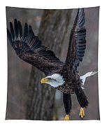 Eagle In The Forest Tapestry