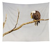 Eagle Nail Biting  Tapestry