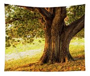 Early Autumn Oak Tapestry