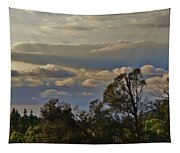 Early Evening Sunset 1 Tapestry