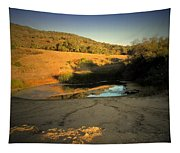 Early Morning Pond Tapestry