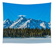 Early Spring In The Tetons Tapestry