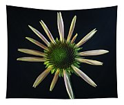 Early Stage Of Cone Flower Bloom Tapestry
