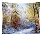 Early Winter's Walk Tapestry