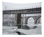 East Falls - The Frozen Schuylkill River Tapestry