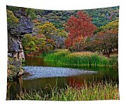 East Trail Pond At Lost Maples Tapestry