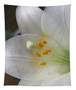 Easter Lily Tapestry