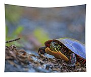 Eastern Painted Turtle Chrysemys Picta Tapestry