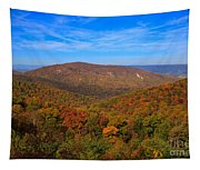 Eaton Hollow Overlook On Skyline Drive In Shenandoah National Park Tapestry